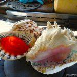陰部のかゆみと天ぷら